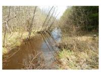 This property is located 2 miles east of Seney. It has