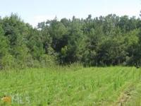Amazing 8 Acres In Senoia! Well And Electricity Already