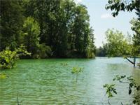 This beautiful property sits on Douglas Lake, 30