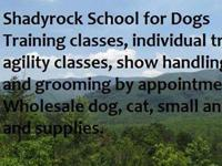 Shadyrock School for Dogs in Altoona, PA offers