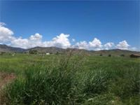 3.32 acre lot located in the country ready for your