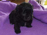 She will certainly await her new house on June 13th.