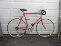 Mens Shogun 300 XL 12 Speed Road Bike This is a lovely