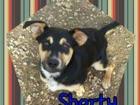 I am Shorty! I heard that some of the best things in