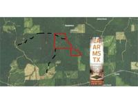 180 acres bottomland hunting with some hardwood timber