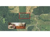 20 ac forest and entertainment system in Winn parish,