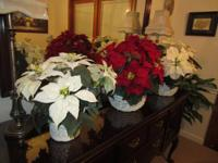 Silk Poinsettia Baskets. You don't have to water, will