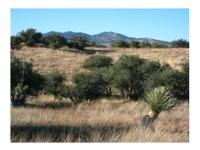 A 47 acre tract with sweeping vistas of mountains and
