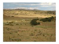 Beautiful tract south of Silver City, NM with sweeping