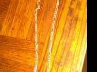 long chain silver necklace. call Kasey if interested.