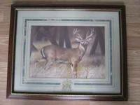 Deer Picture in a Nice Wooden Frame with Glass 22 x 18