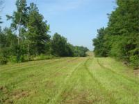 A rare offering of a large acreage tract close to