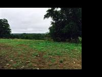165 acres with great building site with a view! Five
