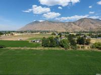 Great location for one big estate. Mature fruit trees