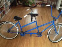 This is a customized built steel frame with chopper