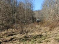13.153 acres not far from town (Sistersville). Old
