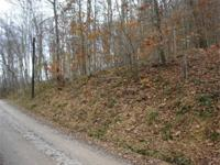 5.352 acres not far from New Martinville or Paden City.