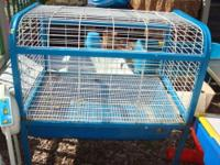 Very nice Blue and White cage that is perfect for