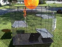 Different set up cages alone were $75 each, accessories