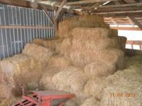 Approx 400-500 small square bales stored inside. Good
