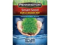 Smart Seed 3 lb. Sun and Shade Central Grass Seed is a
