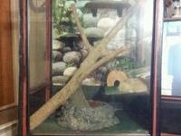 For sale- HUGE cage that once housed a snake. Has
