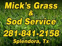 Type: GardenType: Plants Http://www.micksgrass.com Our