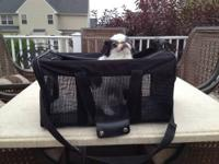 Soft pet carrier. Black in color. Perfect for small