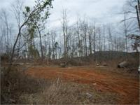 55 acres with several great homesites. Close to