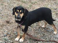 Sophia is a sweet 7 month old active girl! She would