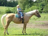 i have for sale a kids or adults pony mare. she is very