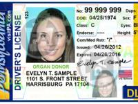 Special Offer in getting drivers license,