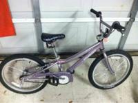 Girls purple Hot Rock bike. We bought this bike at
