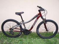 "2009 Specialized Hotrock 24 24"" Wheels (Teen Size). 21"