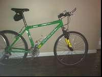 1999 Specialized Stumpjumper Pro Mountain/Road Bike.18""