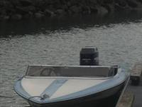 16ft FiberForm with 200 mercury, hydraulic steering,