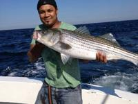 Have 6 areas open for striped bass or fluke charter to