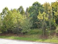 Large wooded lot in Ravenwood South. Property is