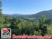 Online Only Auction 504 +/- Acres - Offered Divided