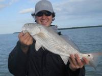 My Fishing Adventure offers Sport Fishing Charters for