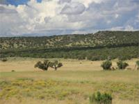 Woodland Valley Ranch in northeastern Arizona is a