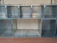 Modular Stainless Steel Cages, 5 Small 15.5 Lx 19.5 Hx