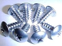 8 STAINLESS STEEL LICENSE PLATE SCREWS IF YOU ARE A CAR