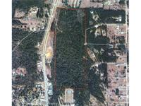 69+/- ACRES ON HWY 31/59 IN STAPLETON, BALDWIN COUNTY,