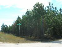 PRICE REDUCED TO $2,550/ACRE. Paved and Graded Roads!