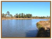 This 348 acre home has potential of numerous kinds. It