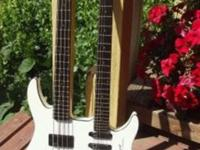 Combination of a XZ-2 bass and a GU-4R guitar Dual,