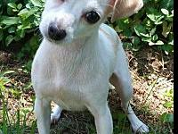 Stella's story Hi everybody! My name is Stella. I am a