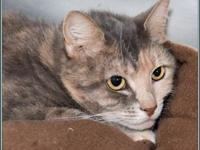 STORM's story $97.50 FEE INCLUDES: neutering/spaying,