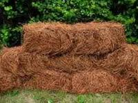 LONG NEEDLE PINE STRAW *FOR 50 BALE $3.25 *for 100 BALE